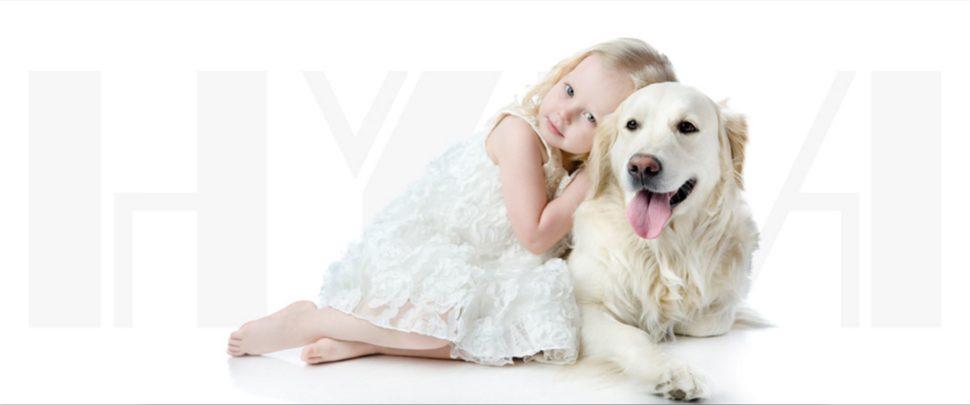 Vodní vysavače Hyla spolehlivě odstraní psí a kočičí chlupy z vašeho koberce a sedačky