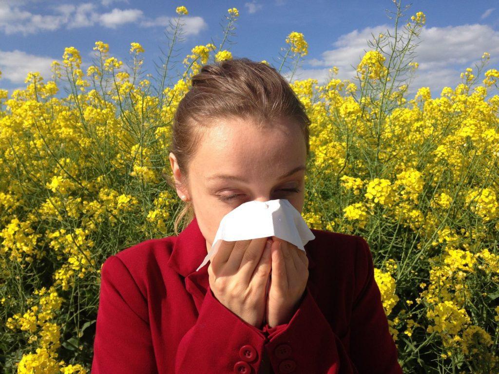 Senná rýma kýchání dýchací potíže pyly