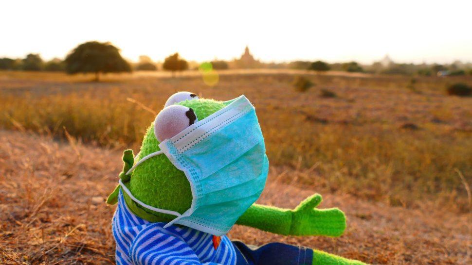 Žába s rouškou, jak se lépe chránit před prachem