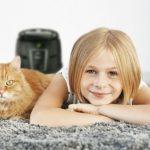 Máte doma kočku? Co dělat, aby se vám spolu žilo jako vbavlnce.