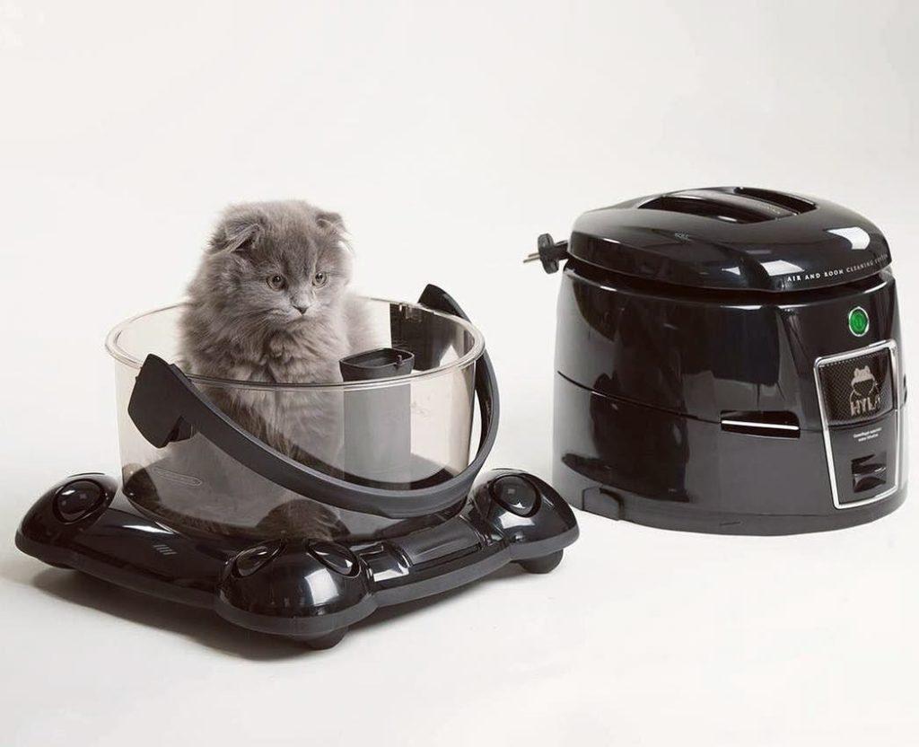 Perská kočka ve vodním vysavači
