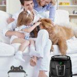Pes vbytě je radost, ale istarost. Jak zajistit spokojenost psa ijeho rodiny?
