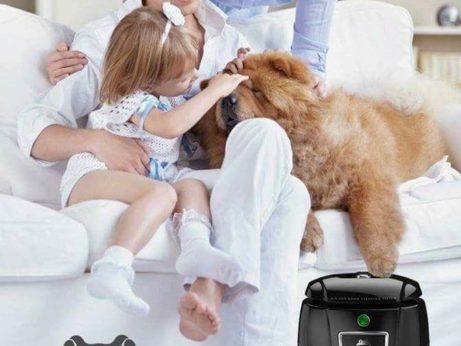 pes rodina úklid chlupů péče